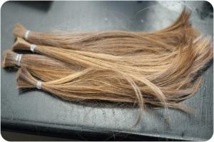 Lessie_Hair006
